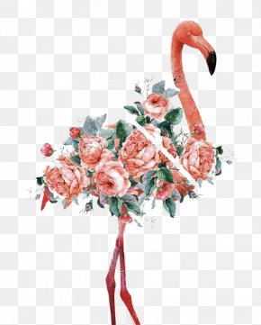 Watercolor Flamingo - Flamingo Women And Birds Art Canvas Print Printmaking PNG