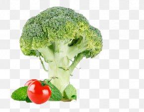Broccoli And Tomatoes - Broccoli Cauliflower Vegetable Food Tomato PNG