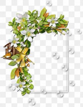 Flower - Borders And Frames Flower Floral Design Vase Clip Art PNG