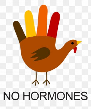 No Hormones Cliparts - Turkey Meat Drawing Hand Clip Art PNG