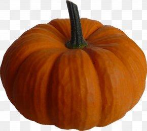 Pumpkin - Pumpkin Pie Squash Clip Art PNG