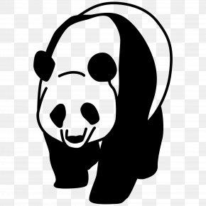 Panda - Panda PNG