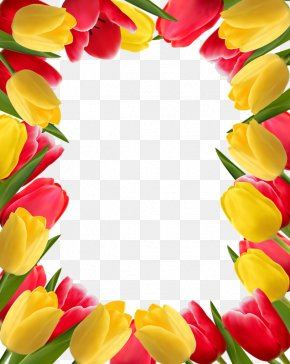 Flowers Tulips - Flower Tulip Stock Photography Clip Art PNG