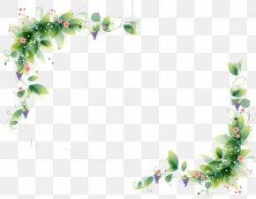 Flower - Borders And Frames Flower Rose Clip Art PNG