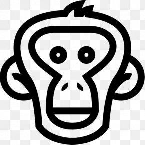 Lion Head - Monkey Ape Chimpanzee Clip Art PNG