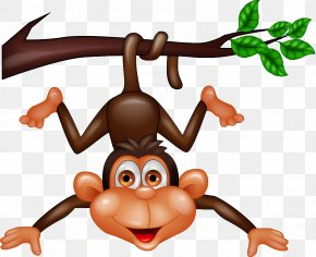 The Little Monkey On The Branches - Monkey Royalty-free Clip Art PNG