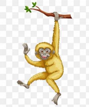 Hand-painted Cartoon Monkey Tree Branch - Monkey Primate Gibbon Cartoon PNG