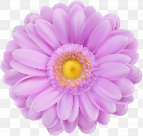 Soft Purple Flower Transparent Clip Art - Purple Flower PNG
