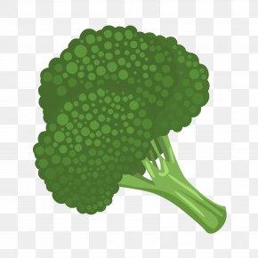 Avocado - Broccoli Vegetable Clip Art PNG