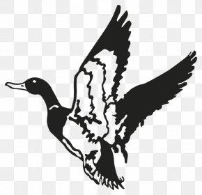 Duck - Duck Mallard Decal Waterfowl Hunting PNG