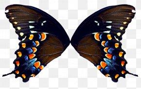 Wings - Butterfly DeviantArt Clip Art PNG