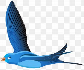 Blue Bird Cartoon Transparent Clip Art Image - Bird Cartoon Clip Art PNG