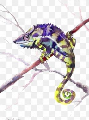 Lizard - Chameleons Lizard Reptile Watercolor Painting Common Iguanas PNG