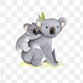 Hand-painted Koala - I Dont Like Koala Bear Illustration PNG