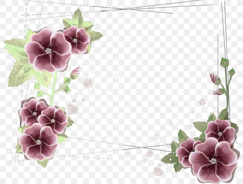 Floral Design Flower El Reloj Perdido Petal, PNG, 800x620px, Floral Design, Blog, Blossom, Branch, Cardinal Download Free