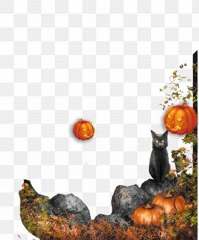 Halloween Pumpkin Decoration - Halloween Pumpkin Decoration Jack-o-lantern PNG