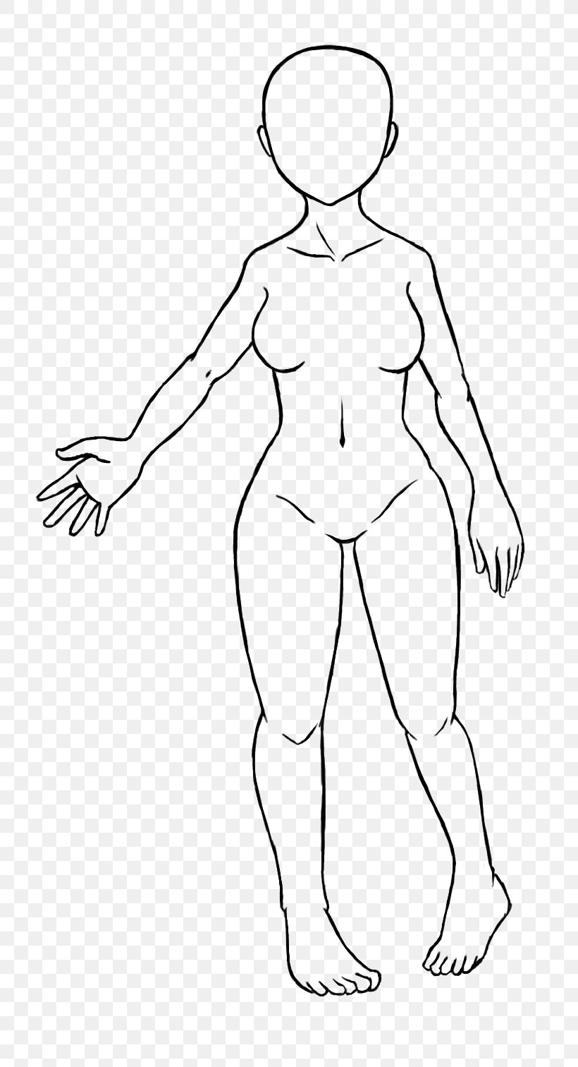 Body Template For Drawing from img.favpng.com