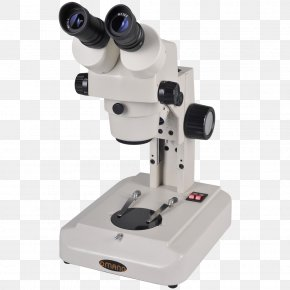 Microscope - Optical Microscope Stereo Microscope Zoological Specimen Physicist PNG