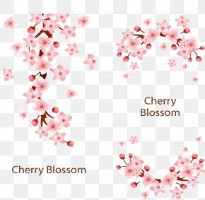 Pink Romantic Cherry Blossoms - Cherry Blossom Adobe Illustrator PNG