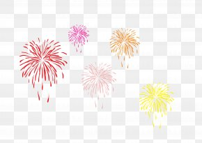 Vector Fireworks Pictures - Fireworks Firecracker Lunar New Year PNG