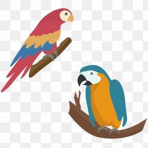 Two Parrots On A Tree Branch - Parrot Touch Fruit : Preschool Game Simple Game For Kids Diamant Koninkrijk Koninkrijk PNG