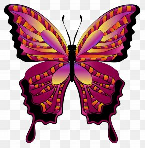 Red Butterfly Clipart Image - Butterfly Clip Art PNG