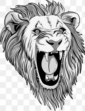 Vector Painted Lion Head - Lion Tiger T-shirt PNG