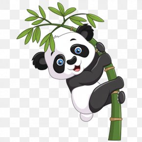 Giant Panda Bear Baby Pandas Clip ArtCute Panda - Giant Panda Vector Graphics Bamboo Illustration Clip Art PNG