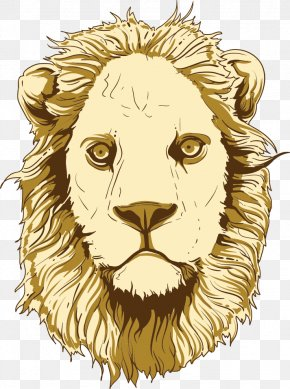 Vector Cartoon Lion - Lion Cartoon Tiger Illustration PNG
