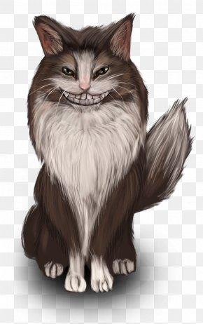 Kitten - Whiskers Norwegian Forest Cat Kitten Domestic Short-haired Cat Siberian Cat PNG