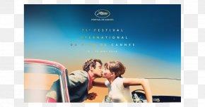 Red Carpet - 2018 Cannes Film Festival Palais Des Festivals Et Des Congrès Cinematography PNG