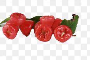 A Bunch Of Wax Apple Picture Material - Java Apple Syzygium Jambos Watery Rose Apple Nutrition Auglis PNG