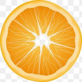 Orange - Clip Art Transparency Orange Juice PNG