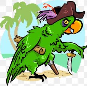 Pirate Parrot - Bird Cockatoo Pirate Parrot Piracy Cartoon PNG