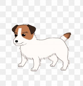 Jack Russell - Dog Breed Jack Russell Terrier Puppy Companion Dog PNG