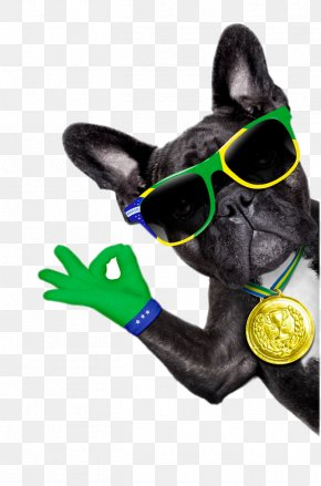 Dog With Sunglasses - French Bulldog Puppy Stock Photography Royalty-free PNG