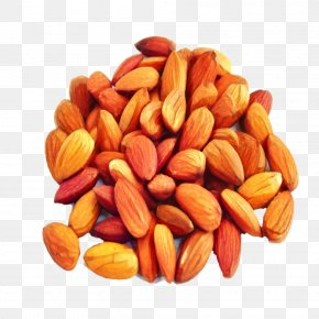 Apricot Kernel Nuts Seeds - Fruit Cartoon PNG