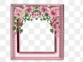 Flower - Floral Design Wedding Invitation Picture Frames Cut Flowers PNG