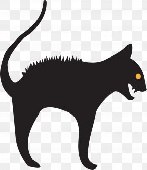 Cat Claw - Cat Whiskers Mammal Carnivora Animal PNG