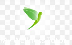 Leaf - Leaf Logo Desktop Wallpaper PNG