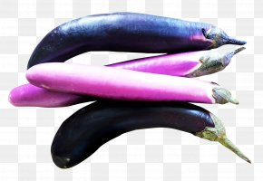 Eggplants - Eggplant Vegetable Tomato PNG