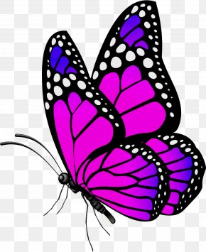 Monarch Butterfly Pink - Monarch Butterfly PNG