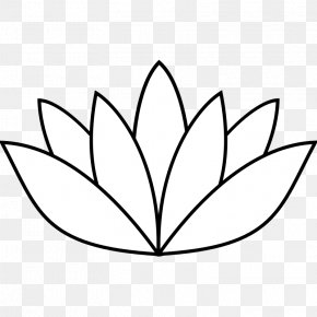 Flower Outline Pictures - Drawing Nelumbo Nucifera Line Art Clip Art PNG