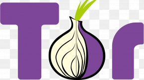Onion - Tor Browser Web Browser Anonymity Selenium PNG