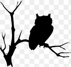 Tree Drawing Outline - Barn Owl Drawing Clip Art PNG