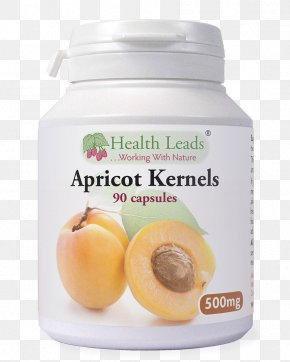 Apricot Kernel - Dietary Supplement Apricot Kernel Capsule Amygdalin PNG