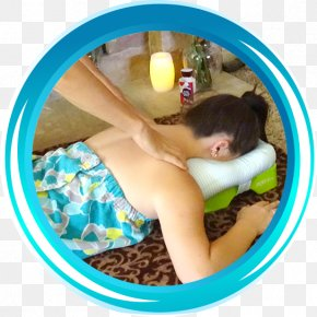You Lie On The Table Sleeping - Pillow Massage Neck Head Shark PNG