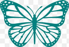 Butterfly - Butterfly Coloring Book Drawing Clip Art PNG