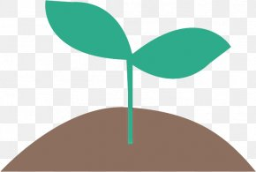 Plant Stem Plant - Green Leaf Clip Art Plant Plant Stem PNG
