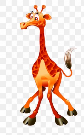Giraffe - Giraffe Cartoon Drawing Illustration PNG